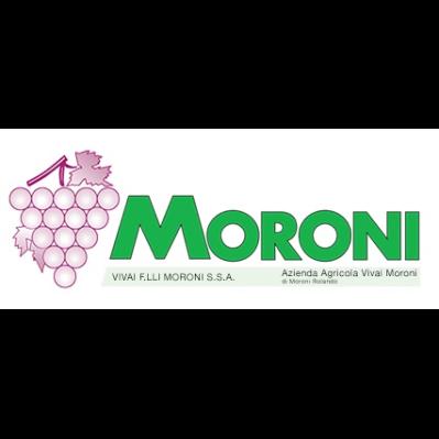 Vivaio Moroni - Aziende agricole Crespina Lorenzana