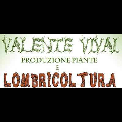 Azienda Agricola Valente - Vivai piante e fiori Montelupo Albese