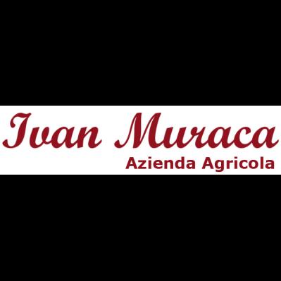 Azienda agricola Ivan Muraca - Aziende agricole Cicala