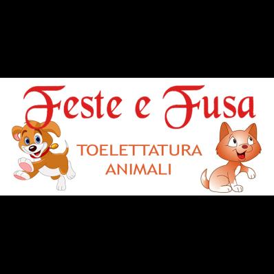 Feste e Fusa Toelettatura Animali - Animali domestici - toeletta Imperia