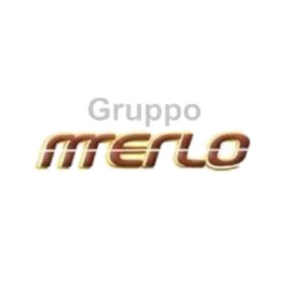 Merlo Viaggi - Autonoleggio Cuneo