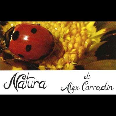Natura - Giardinaggio - servizio Colceresa