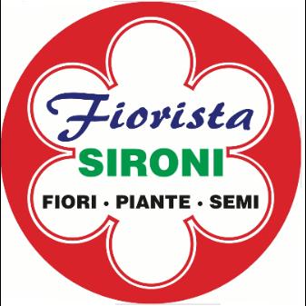 Sironi Fiori & Piante - Fiori e piante - vendita al dettaglio Paina
