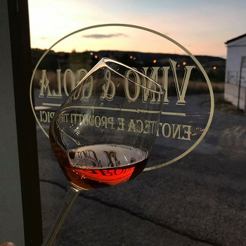 Enoteca Vino & Gola - Enoteche e vendita vini Lolla