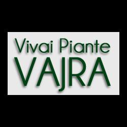 Vivai Piante Vajra - Giardinaggio - servizio Carrù