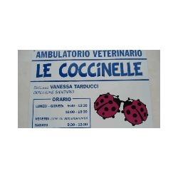 Ambulatorio Veterinario Le Coccinelle - Veterinaria - ambulatori e laboratori Mogliano