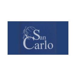 Ambulatorio Polispecialistico San Carlo S.r.l. - Psicologi - studi Casaleone