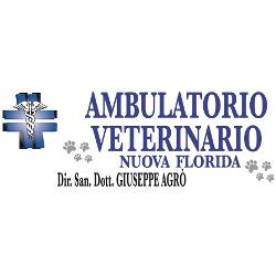 Clinica  Veterinaria Nuova Florida del Dott. Giuseppe Agrò - Veterinaria - ambulatori e laboratori Ardea