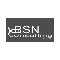 Bsn Consulting 42 - Ecologia - studi consulenza e servizi Roma