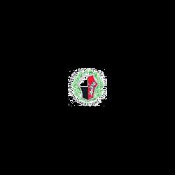 Associazione di Pubblica Assistenza - Associazioni ed istituti di previdenza ed assistenza Siena