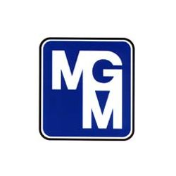 M.G.M. Motori Elettrici - Motori elettrici e componenti Assago