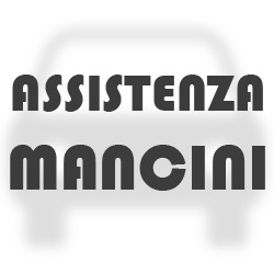 Assistenza Mancini - Autofficine e centri assistenza Ponte San Giovanni