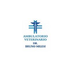 Milesi Dr. Bruno Veterinario - Veterinaria - ambulatori e laboratori Calolziocorte