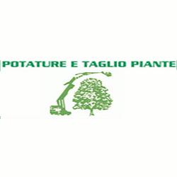 Tardivo Cav. Giovanni e Figli - Vivai piante e fiori Gaiarine