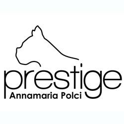 Prestige Boutique - Abbigliamento uomo - vendita al dettaglio Arezzo