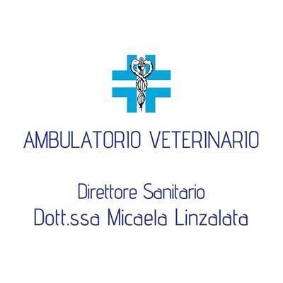 Ambulatorio Veterinario Dott.ssa Linzalata Micaela - Veterinaria - ambulatori e laboratori Spinazzola