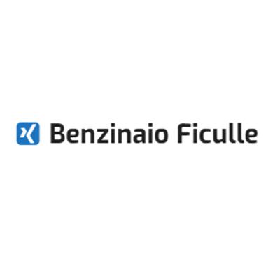 Stazione di Servizio IP di Pasqualetti Marco - Distribuzione carburanti e stazioni di servizio Ficulle