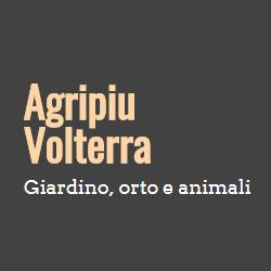 Agripiu'
