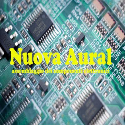 Nuova Aural - Componenti elettronici Castignano