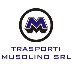 Trasporti Musolino - Trasporti Nazionali ed Esteri - Trasporti Reggio di Calabria