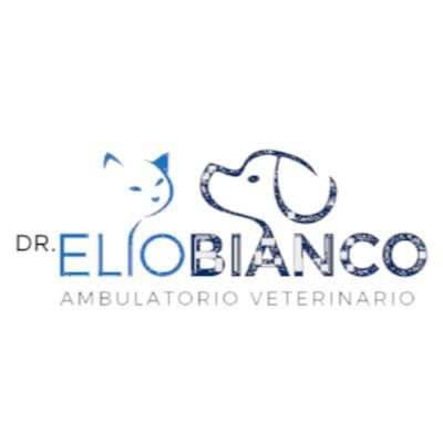 Ambulatorio Veterinario Dott. Bianco Elio - Veterinaria - ambulatori e laboratori Olgiate Comasco