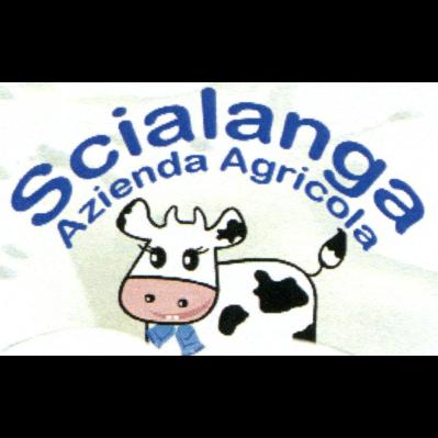 Azienda Agricola Scialanga - Fiano Romano