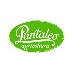 Pantaleo Agricoltura Srl - Aziende agricole Fasano
