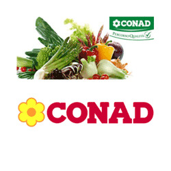 Conad City - Alimentari - vendita al dettaglio Santa Maria Nuova-Spallicci