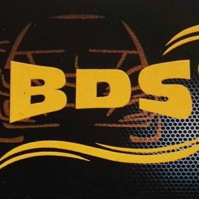 BDS Group Ricambi Auto - Ricambi e componenti auto - commercio Catanzaro