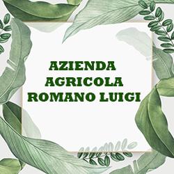 Azienda Agricola Romano Luigi - Agrumi Corigliano-Rossano