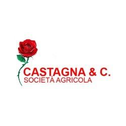Società Agricola Castagna