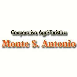 Cooperativa Monte S. Antonio - Aziende agricole Solignano
