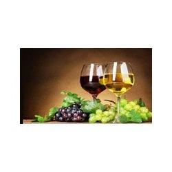 Azienda Agricola al Colle Vendita Vini - Enoteche e vendita vini San Damiano al Colle