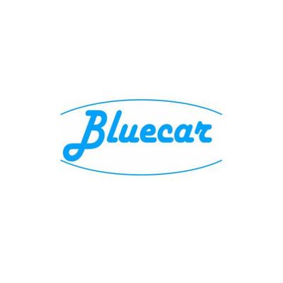 Bluecar - Autorimesse e parcheggi Molfetta