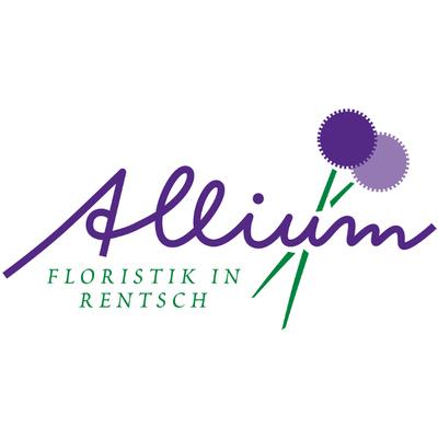 Allium Addobbi Floreali e Piante - Fiori e piante - vendita al dettaglio Bolzano