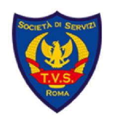 TVServices Vigilanza - Vigilanza e sorveglianza Guidonia