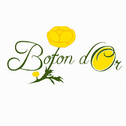 Hotel Boton D'Or