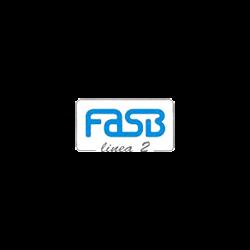 Fasb Linea 2 - Metalli e leghe Cremella