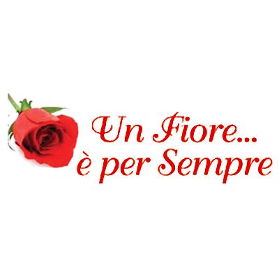 Un Fiore E' per Sempre - Fiori e piante - vendita al dettaglio Frosinone
