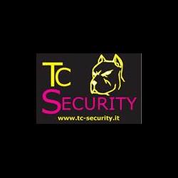 T.C. Security Srl - Antenne radio-televisione San Felice sul Panaro