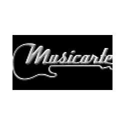 Musicarte - Amplificazione sonora Chiaravalle