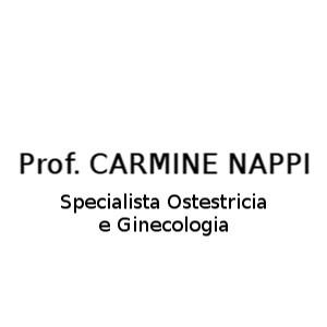 Nappi Prof. Carmine - Medici specialisti - ostetricia e ginecologia Napoli