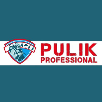 Pulik Professional del Geom. D. Galipo'  Disinfestazioni - Derattizzazioni -