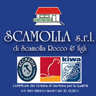 Scamolla