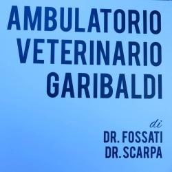 Ambulatorio Veterinario Garibaldi - Veterinaria - ambulatori e laboratori Bollate