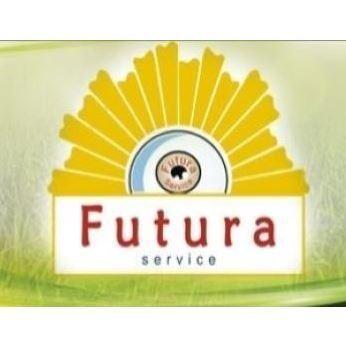 Cooperativa Sociale Futura Service - Carrelli elevatori e trasportatori - commercio e noleggio Cittanova