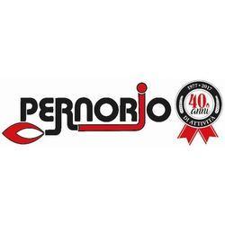 Pernorio Termotecnica - Condizionamento aria impianti - installazione e manutenzione Savona