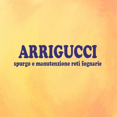 Arrigucci