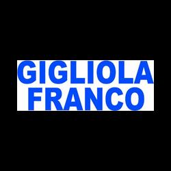 Elettrodomestici Franco Gigliola - Elettrodomestici - riparazione e vendita al dettaglio di accessori La Spezia