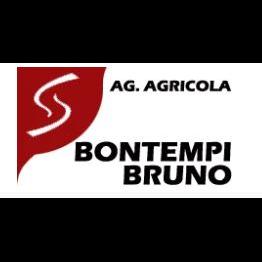 Agenzia Agricola Bontempi Bruno - Caminetti, forni da giardino e barbecues Marone